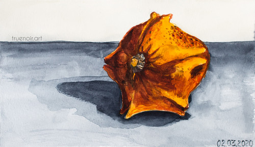 Star Gourd by Oksana Ossipov 5.5 x 8.5 in, Canson 138 lb paper, Watercolor