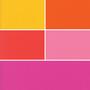 Rainbow Bella Solids Fat Quarter Bundle - 10 Fabrics