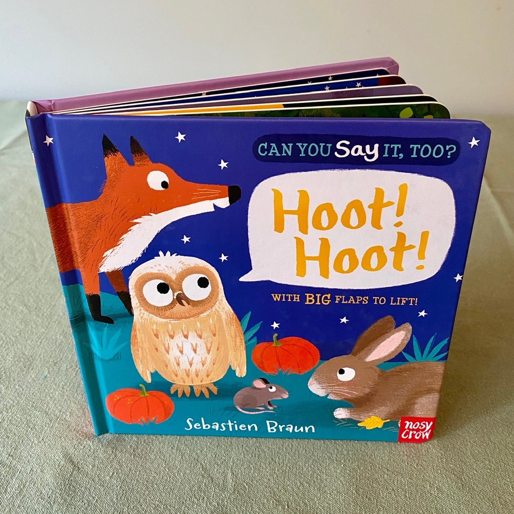 BOOK: Can You Say It Too? HOOT HOOT by Nosy Crow