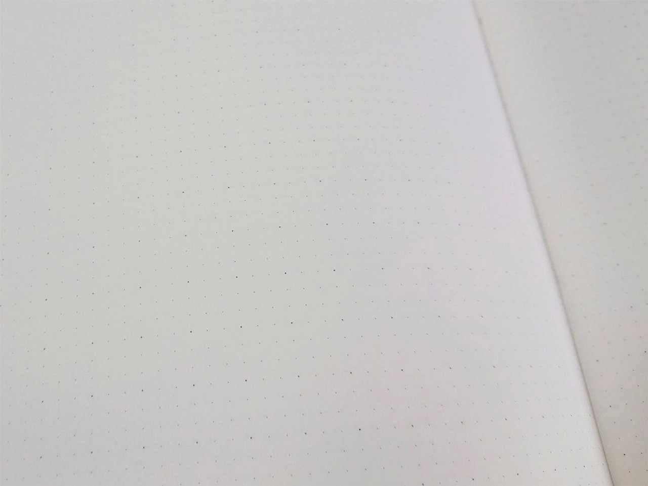 Archie's notebook dot grid close-up
