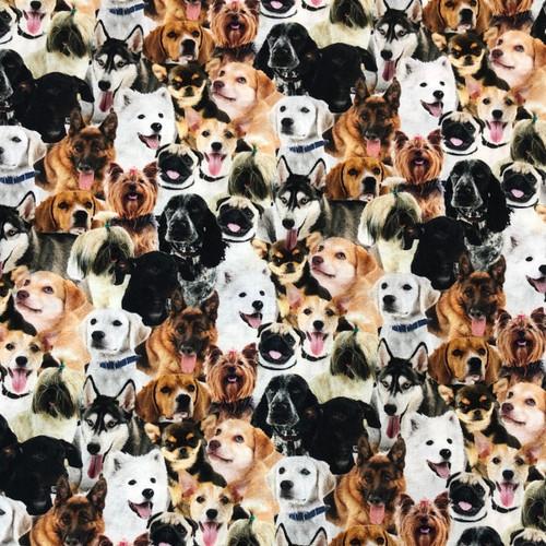 Dogs Everywhere Greek Letter Apparel
