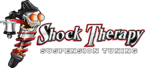Shock Therapy, LLC