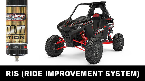 Ride Improvement System (RIS) 2018 - 2020 Polaris RS1 CALL FOR AN APPOINTMENT
