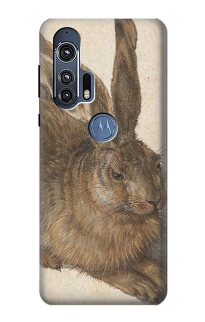 S3781 Albrecht Durer Young Hare Case For Motorola Edge+
