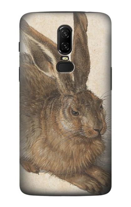 S3781 Albrecht Durer Young Hare Case For OnePlus 6