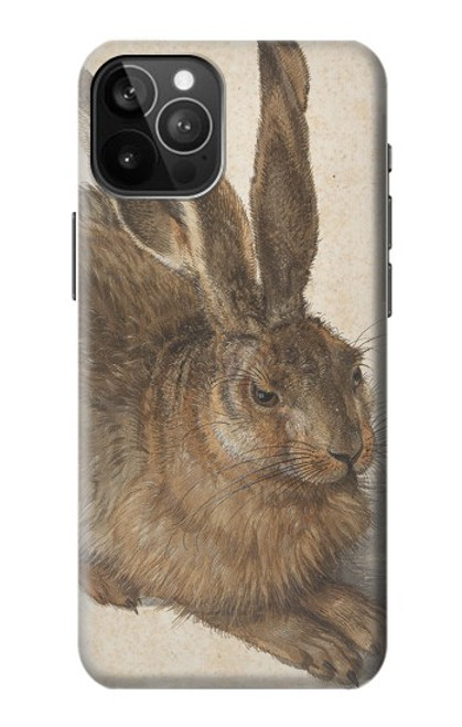 S3781 Albrecht Durer Young Hare Case For iPhone 12 Pro Max