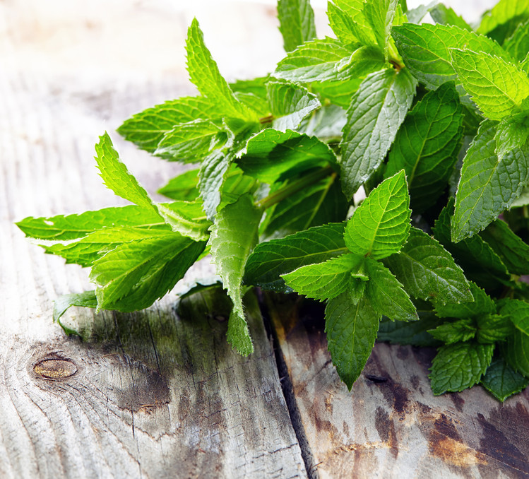 Peppermint Super Essential Oil