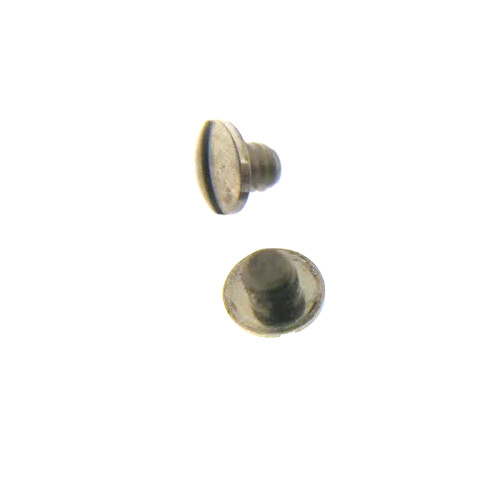 Ebel case back screw