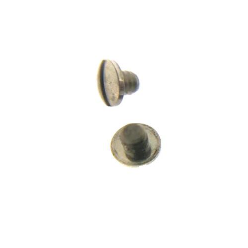 Ebel case back screw