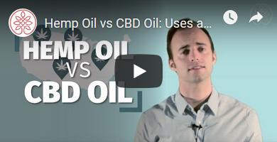 Hemp Vs CBD