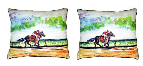 Betsy Drake NC289 Betsys Bird of Paradise No Cord Pillow 16 x20