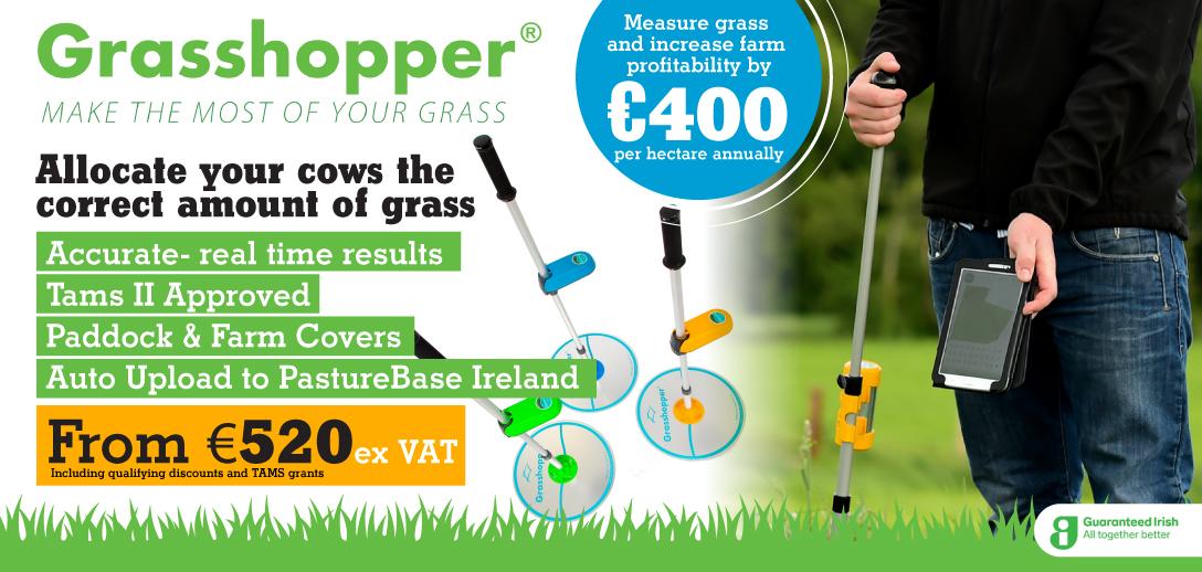 11340-clp-grasshopper-web-banner2.jpg