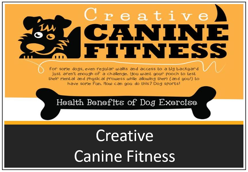 infographic-thumbnail-creative-canine-fitness-1.jpg