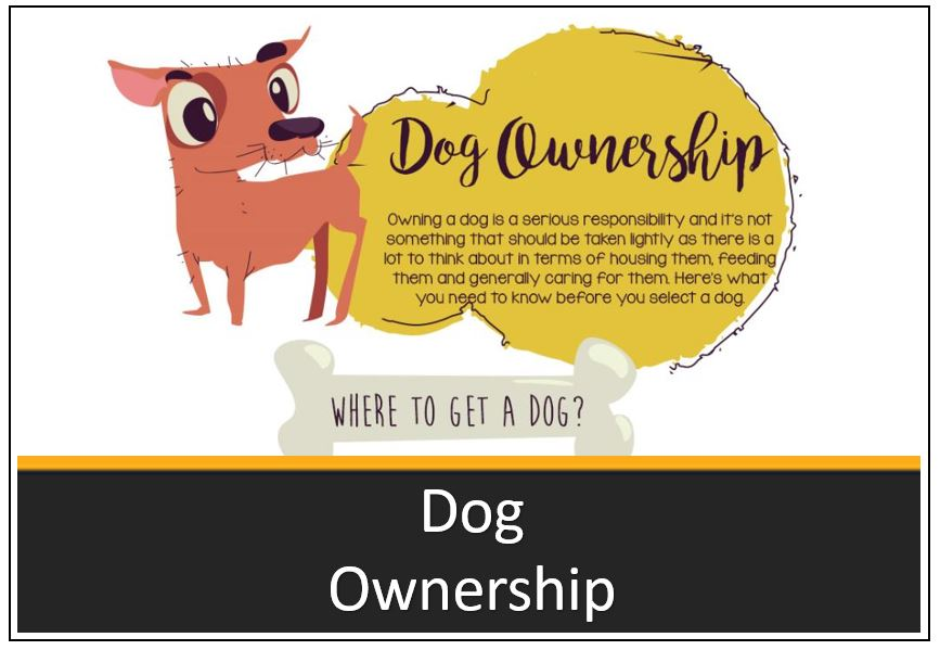 infographic-thumbnail-dog-ownership-1.jpg