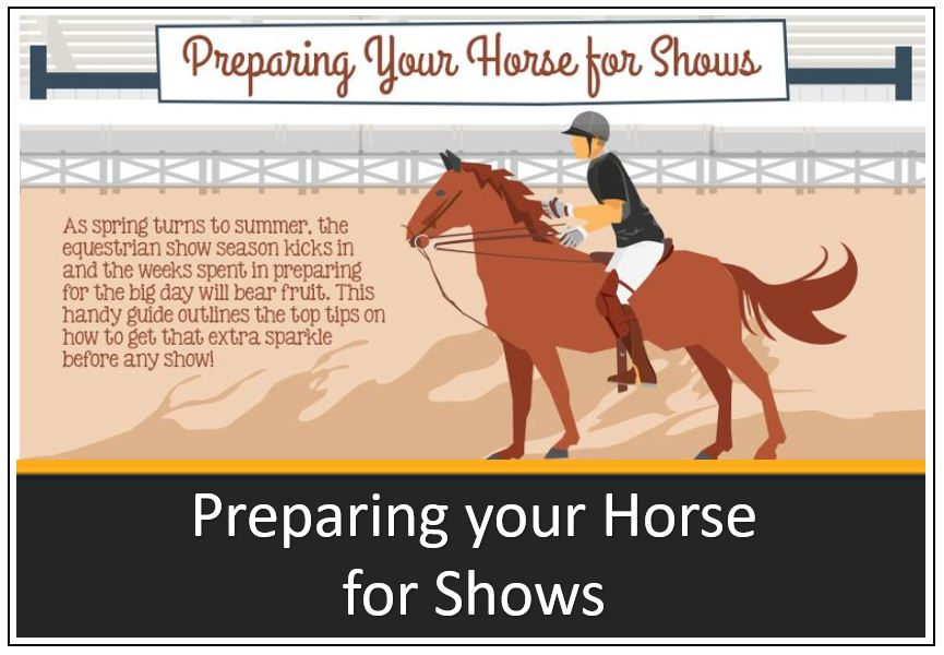 infographic-thumbnail-preparing-your-horse-for-shows-2.jpg