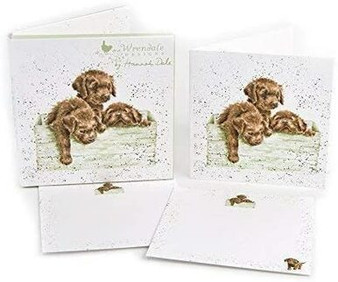 Wrendale Designs Box of Chocolates Notecards