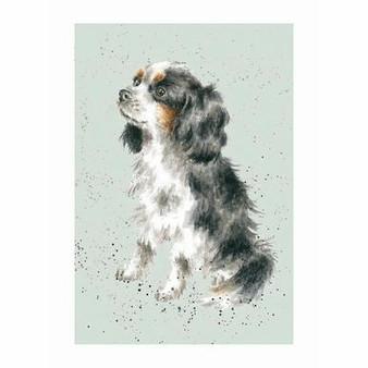 Card, A Dogs Life... Cavalier King Charles Spaniel