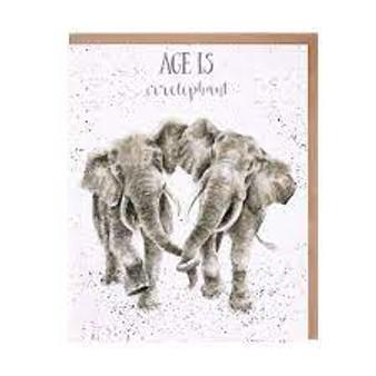 Wrendale Age is Irrelphant Card