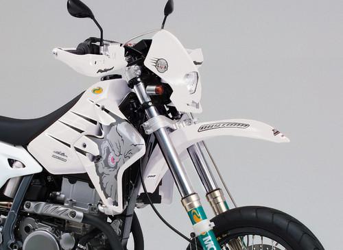 Daytona (Japan) Motorcycle DGP Euro Front Fender (Universal) White