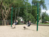 Item # 581-502:  2-Bay Single Post Swing = 2 Seats Add as many as 4 more bays for a total of 10 swing seats!