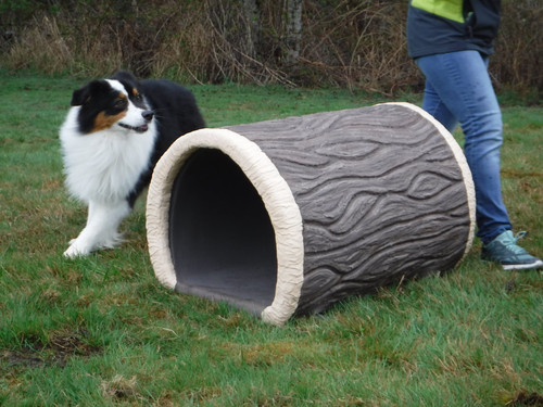 Dog-On-It Parks Terrier Tunnel
