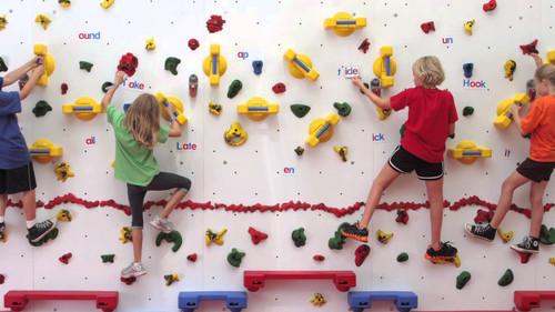 Everlast Climbing Adaptive Climbing Walls