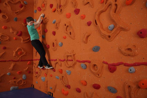 Everlast Climbing Sandstone Relief-Feature™ Wall