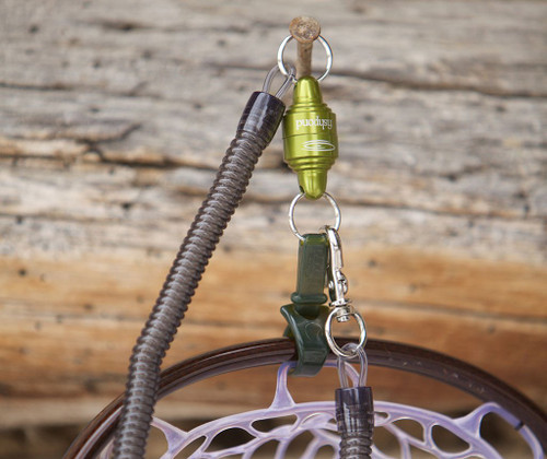 Fishpond Confluence Net Release - Lichen