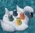 Order ashland hard seltzer variety pack (floatie not included)
