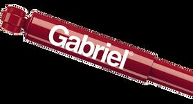 Gabriel Shocks