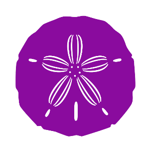 sand-dollar-no-background.png