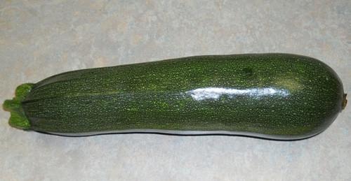 Zucchini Elite F1