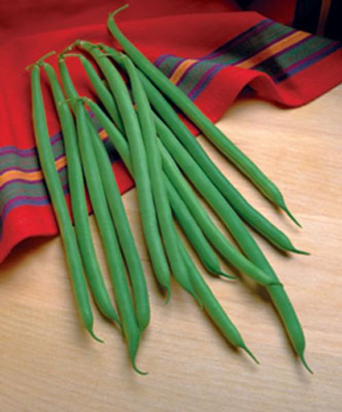 Jade Bean