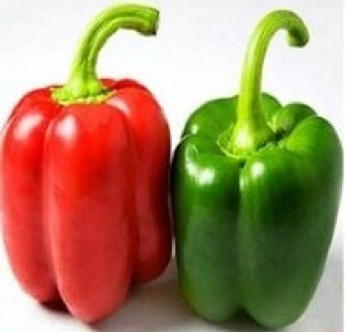 "Yolo Wonder Pepper ""B"""