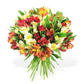 b7ba4c7711a Thank You Flowers Delivery - Flower Station Florist