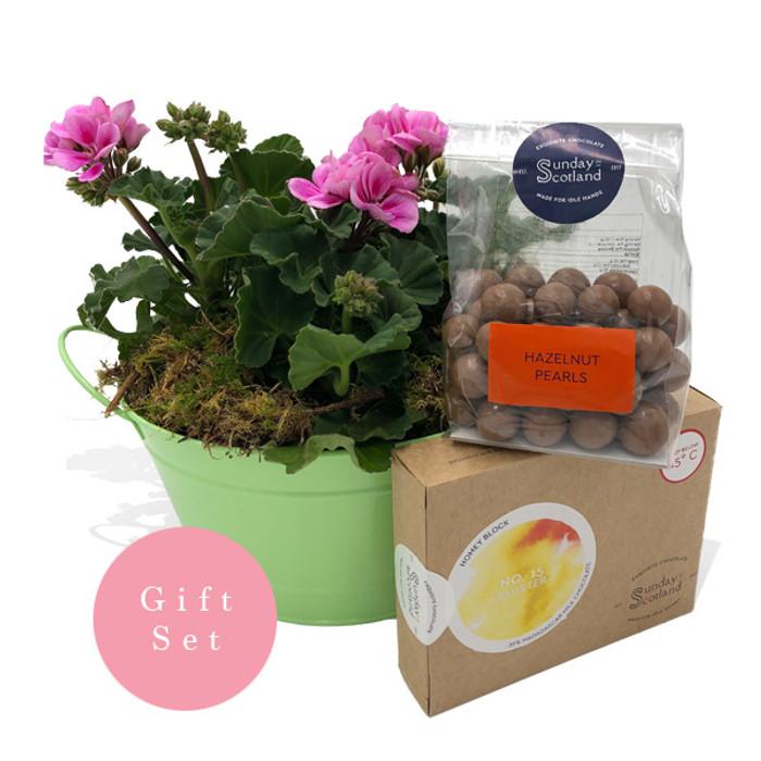 Geranium Basket with Luxury Chocolates