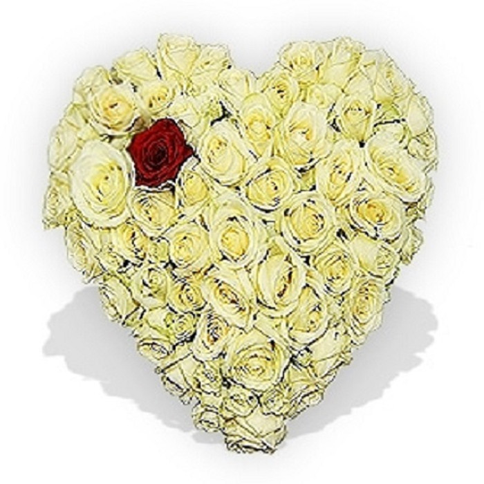 Heart Shaped Roses Tribute