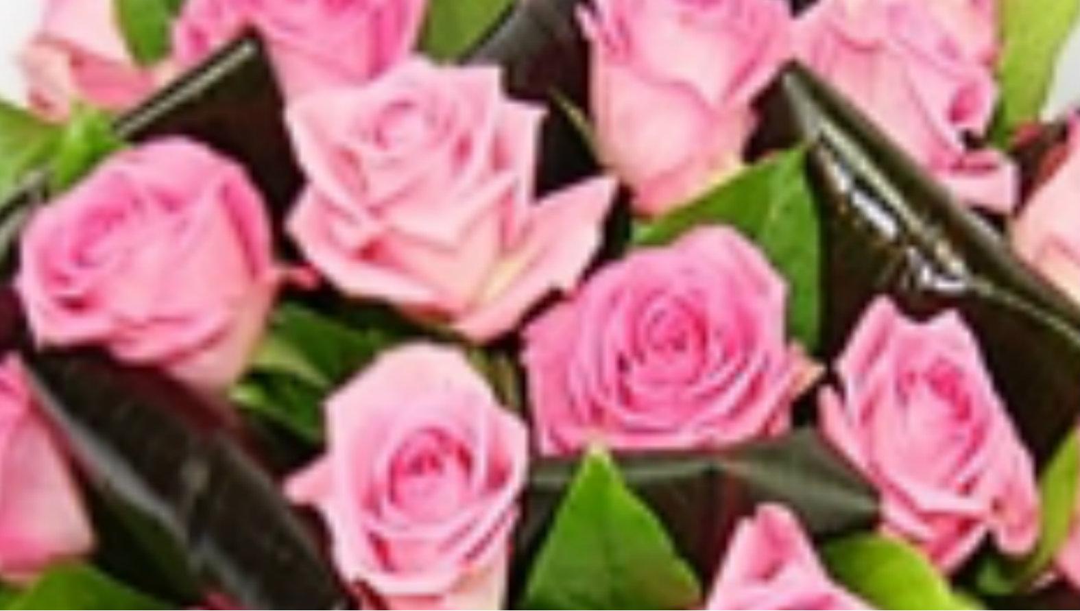 aqua-pink-roses.jpg