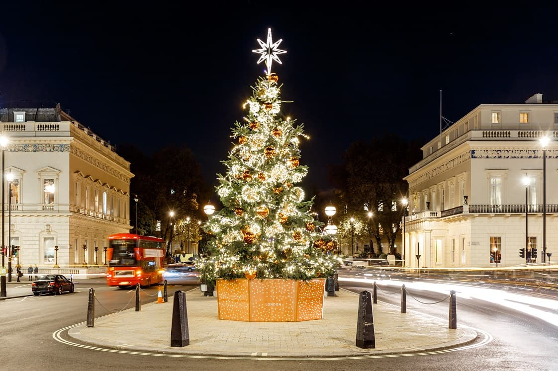 london-tree-outdoor-min.jpg