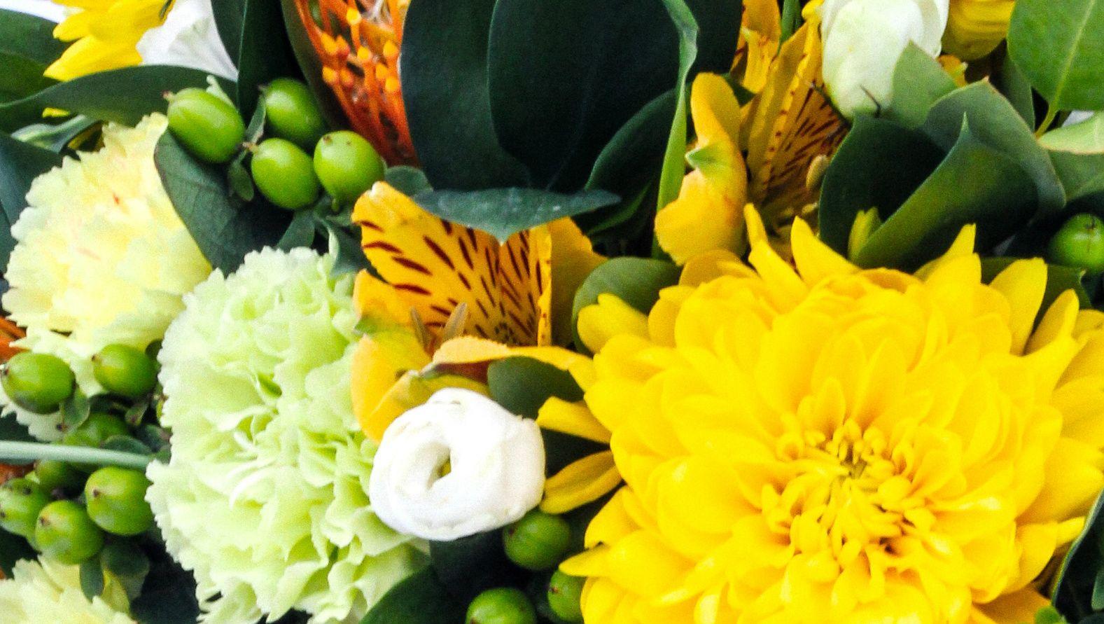 mellow-yellow-closeup.jpg