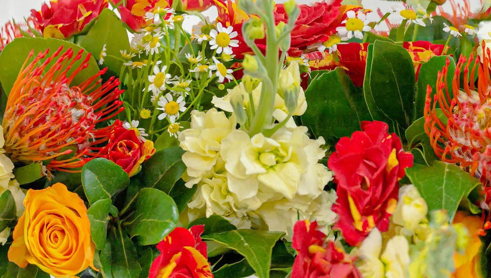 red-bouquet-tfull-size-2.jpg