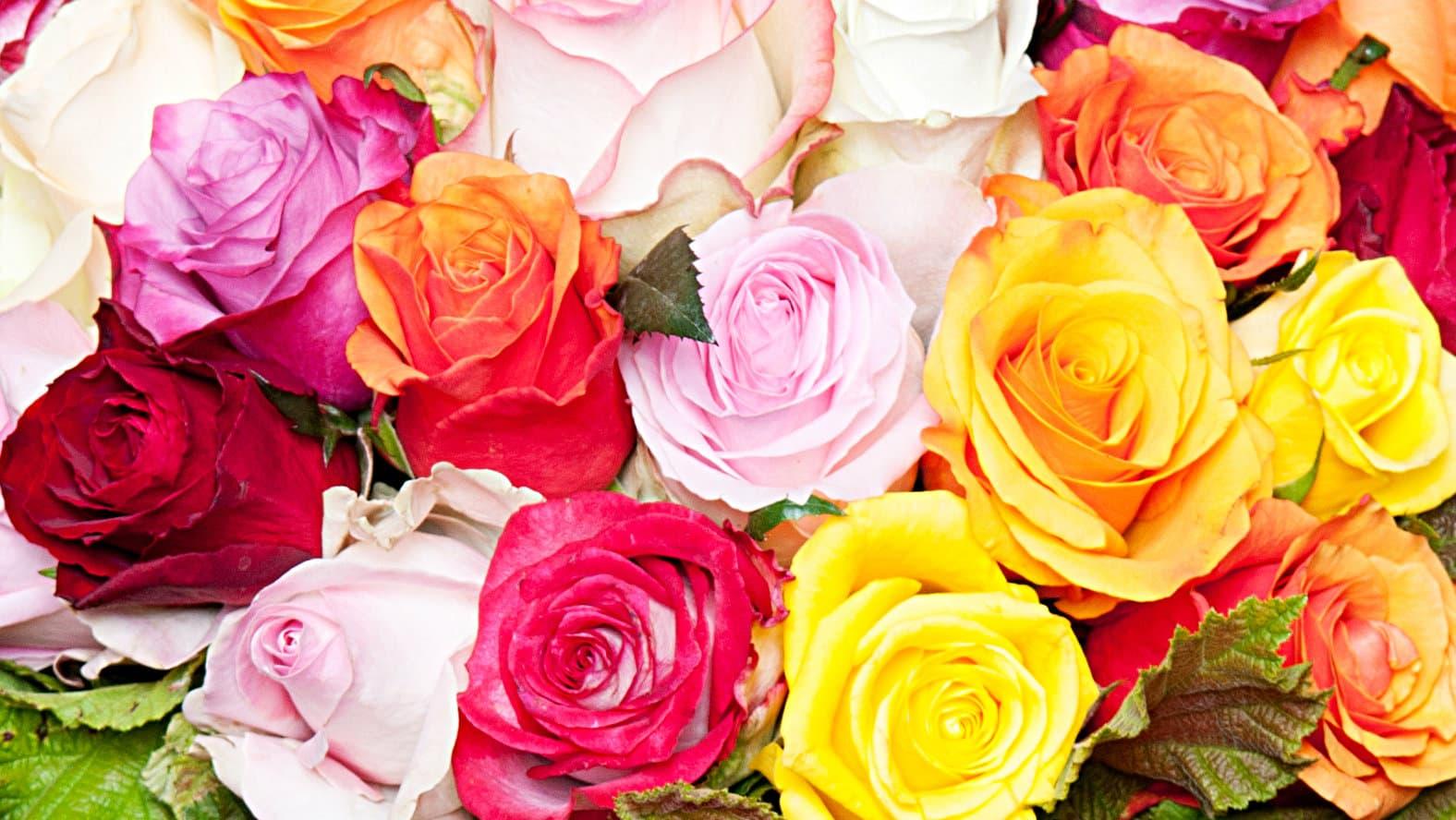 sunshine-rose-mix-flowers-tation-min.jpg