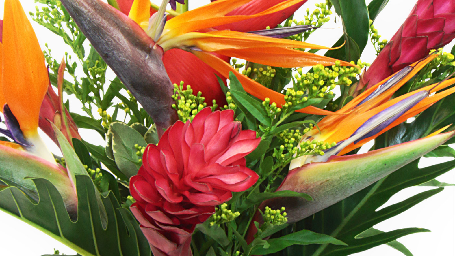 tropical-flowers-bouquet.jpg