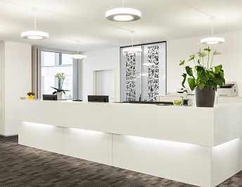 Reception Display Plants