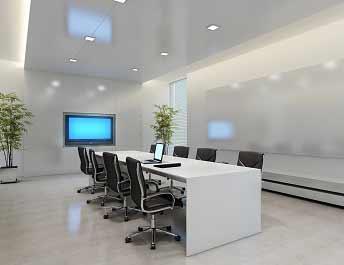 Meeting Room Plants
