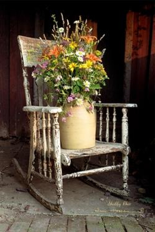 Shabby Chic Picture - 40000049087