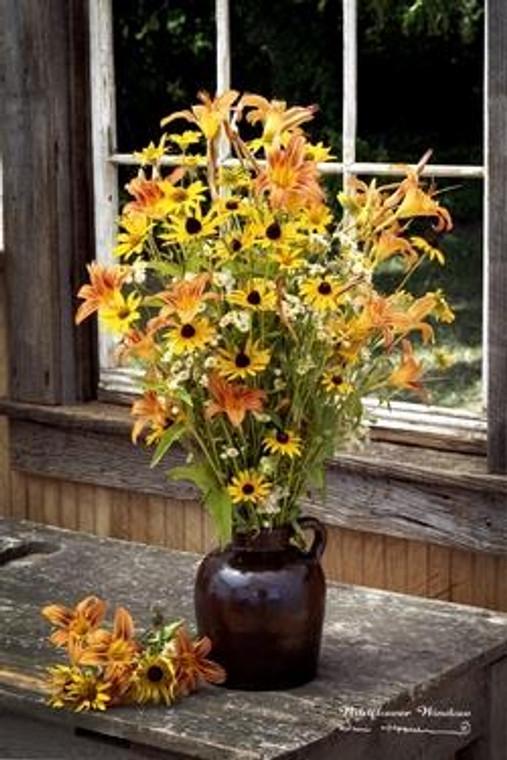 Wildflower Window Picture - 40000049102