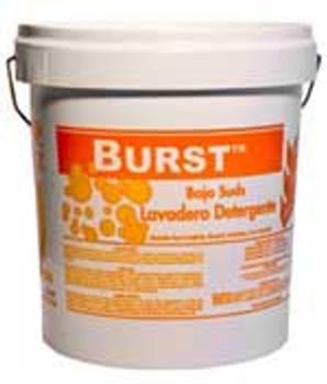 100404-74-BURST-Powdered Laundry Detergent THEOCHEM|WHITTCO Industrial Supplies