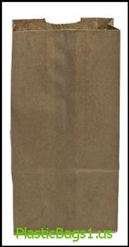 G309 Brown Paper Bags 8.25x5.5x16.5(20b) RD Plastics