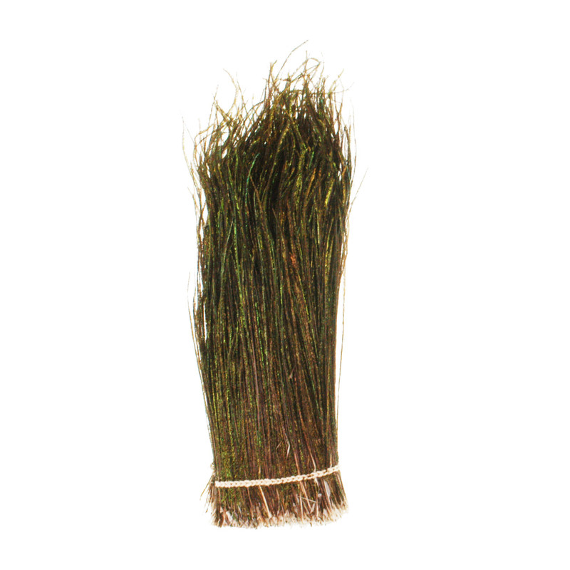 A 1/4 Ounce Bundle of Strung Peacock Herl